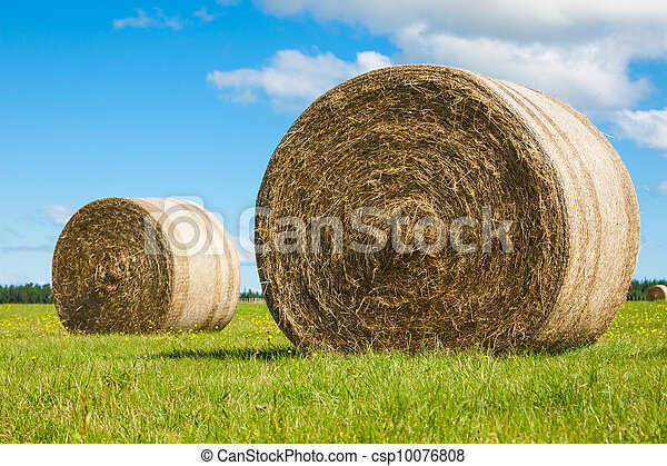Two big hay bale rolls in a green field - csp10076808