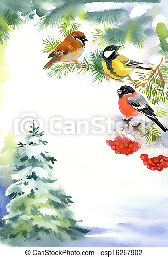 Two birds and bullfinch on the snow - csp16267902