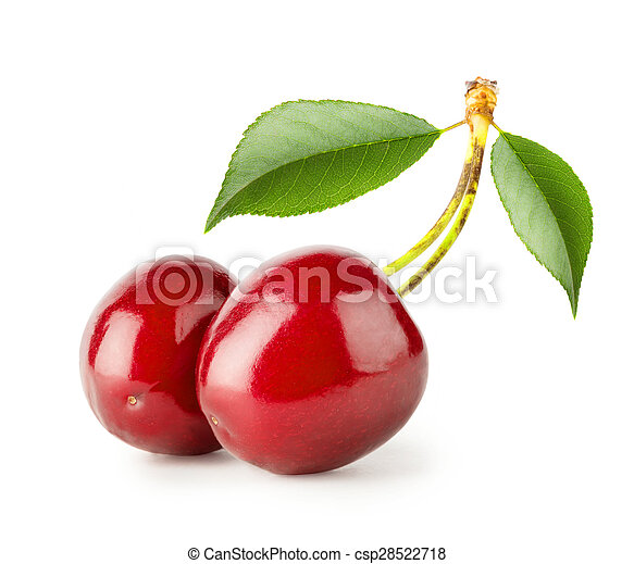 Two bright ripe cherries with leaves - csp28522718