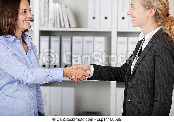 Two Businesswomen Shaking Hands - csp14168569