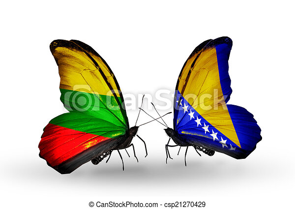 Two butterflies with flags on wings as symbol of relations Lithuania and Bosnia and Herzegovina - csp21270429