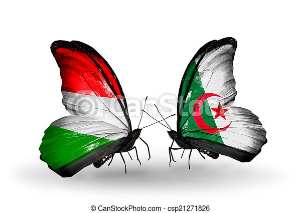 Two butterflies with flags on wings as symbol of relations Hungary and Algeria - csp21271826