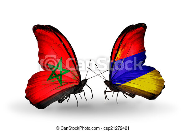 Two butterflies with flags on wings as symbol of relations Morocco and Armenia - csp21272421