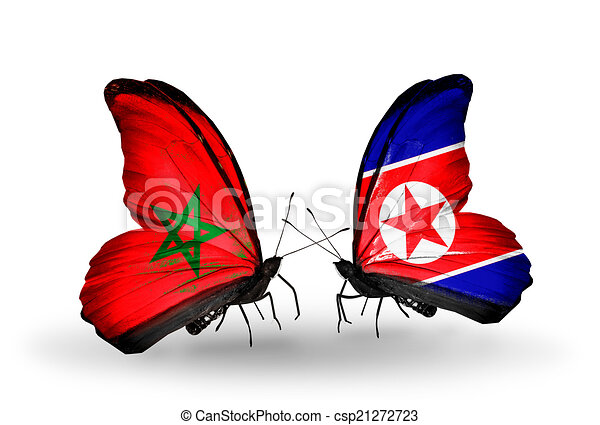 Two butterflies with flags on wings as symbol of relations Morocco and North Korea - csp21272723