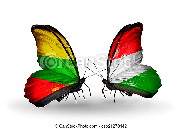 Two butterflies with flags on wings as symbol of relations Lithuania and Hungary - csp21270442