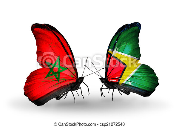 Two butterflies with flags on wings as symbol of relations Morocco and Guyana - csp21272540