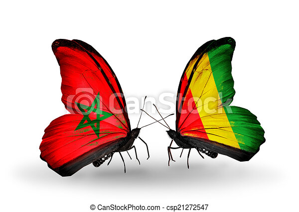 Two butterflies with flags on wings as symbol of relations Morocco and Guinea - csp21272547