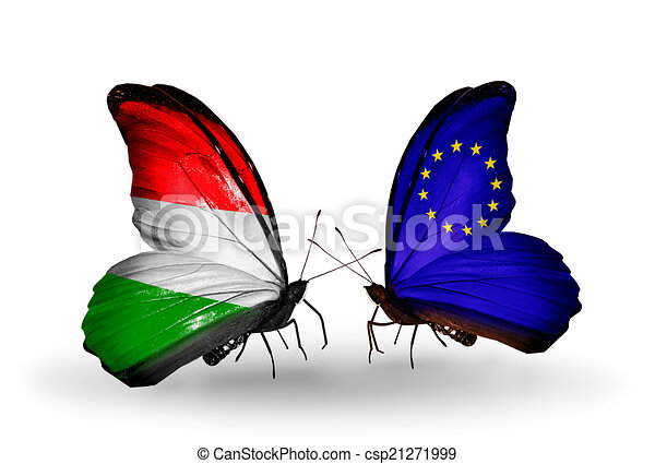 Two butterflies with flags on wings as symbol of relations Hungary and European Union - csp21271999