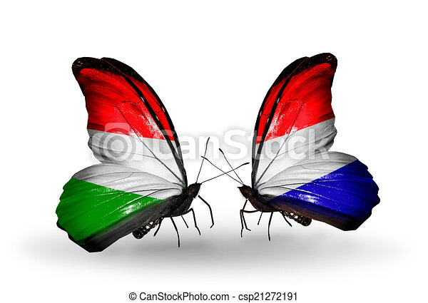 Two butterflies with flags on wings as symbol of relations Hungary and Holland - csp21272191
