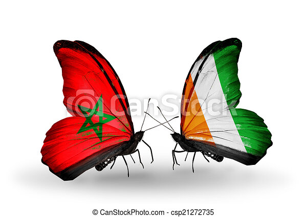 Two butterflies with flags on wings as symbol of relations Morocco and Cote Divoire - csp21272735