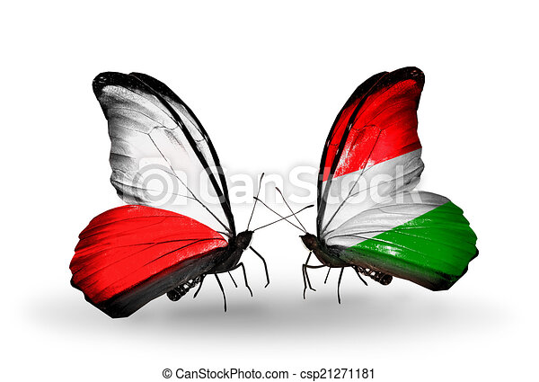 Two butterflies with flags on wings as symbol of relations Poland and Hungary - csp21271181