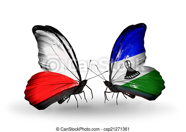 Two butterflies with flags on wings as symbol of relations Poland and Lesotho - csp21271361