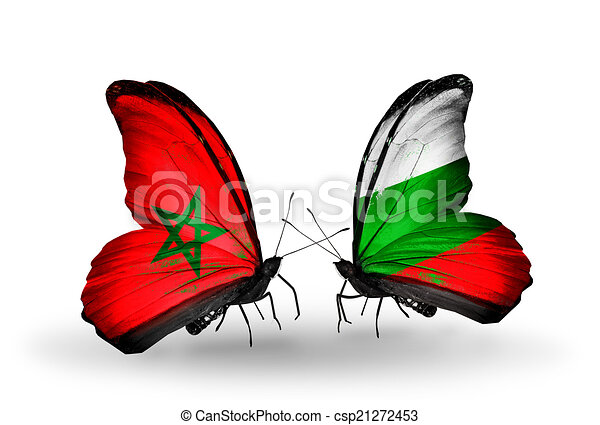 Two butterflies with flags on wings as symbol of relations Morocco and Bulgaria - csp21272453