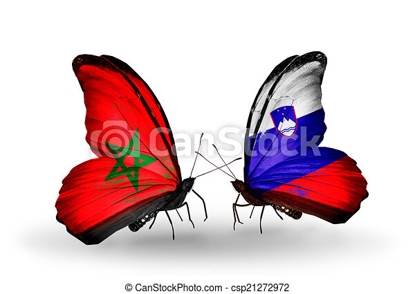 Two butterflies with flags on wings as symbol of relations Morocco and Slovenia - csp21272972