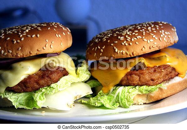 two cheeseburgers - csp0502735