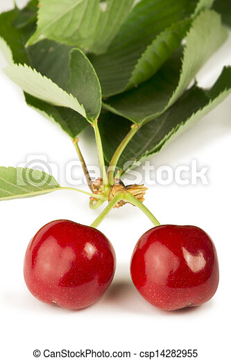 Two Cherries and branch with leaves - csp14282955