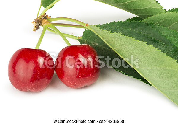Two Cherries and branch with leaves - csp14282958