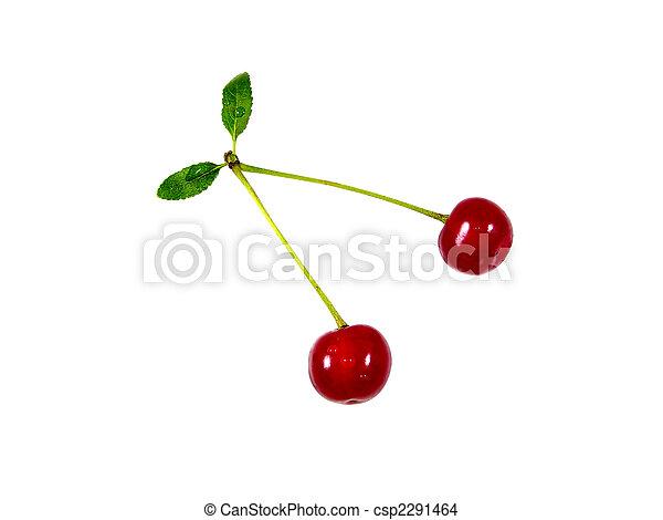 Two cherries - csp2291464