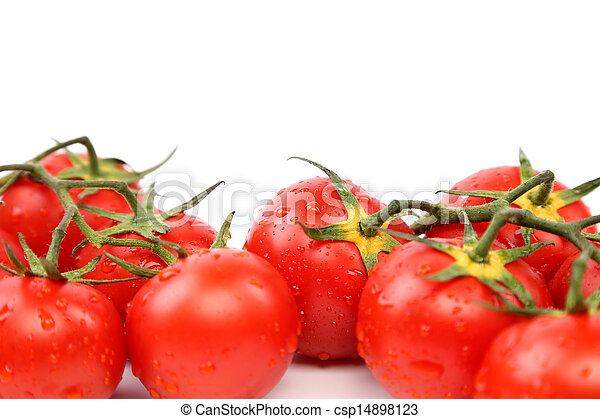 Two clusters of small red tomatoes on a branch - csp14898123