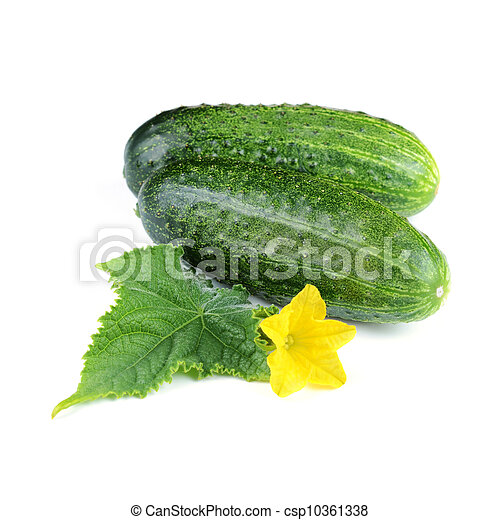 Two Cucumber Vegetables with Leaf and Flower - csp10361338