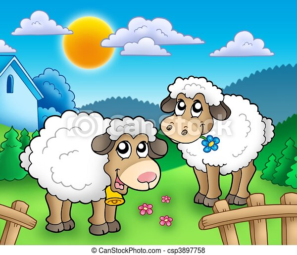 Two cute sheep behind fence - csp3897758