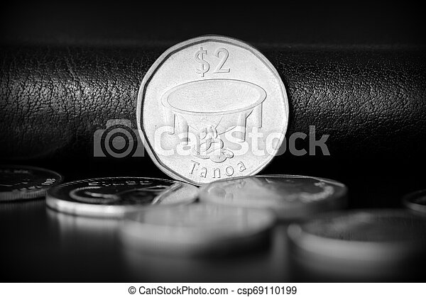 Two fijian dollars on a dark background close up. Black and white - csp69110199