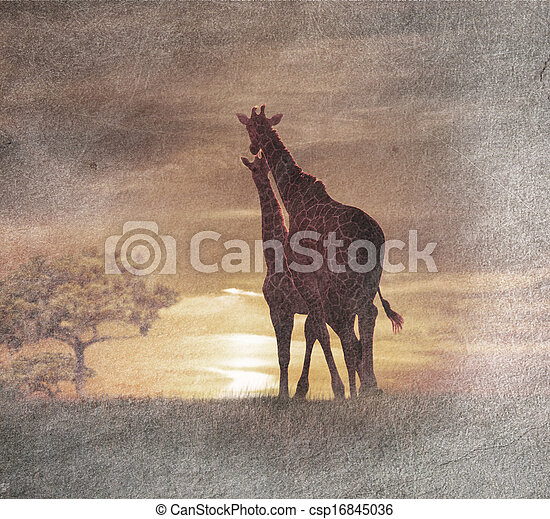 Two Giraffes At The Sunset - csp16845036