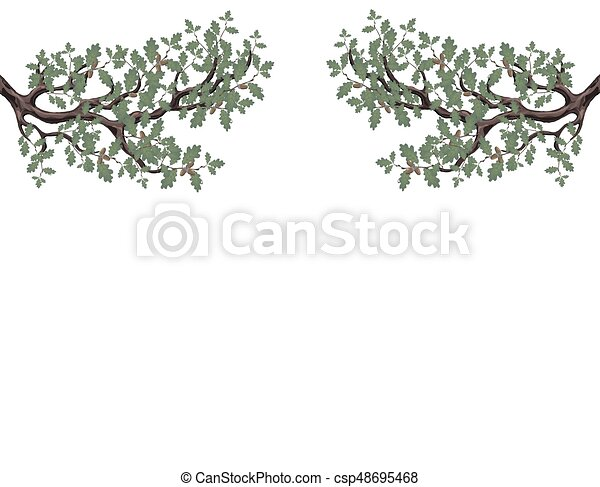 Two green branches of oak with acorns on both sides. Volumetric drawing without a grid and a gradient. Isolated on white background. illustration - csp48695468