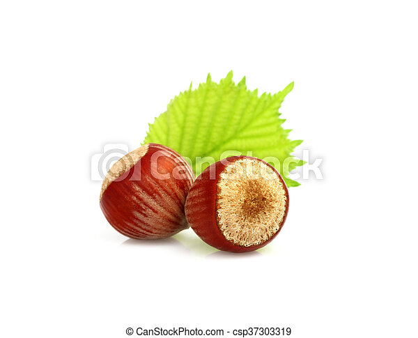 Two hazelnuts with leaves. - csp37303319