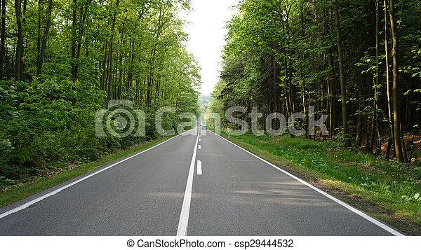 Two-lane road - csp29444532