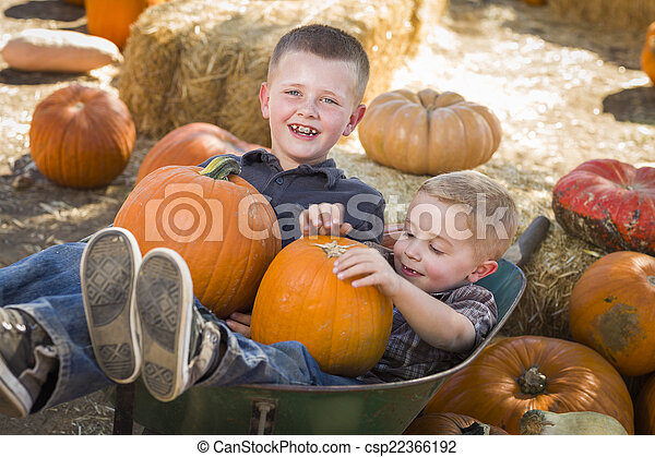 Two Little Boys Playing in Wheelbarrow at the Pumpkin Patch - csp22366192