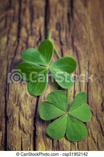 Two lucky clovers on a vintage wood background - csp31952142