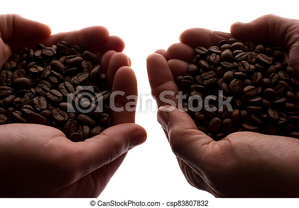 Two man's hand a handful of coffee beans - silhouette - csp83807832