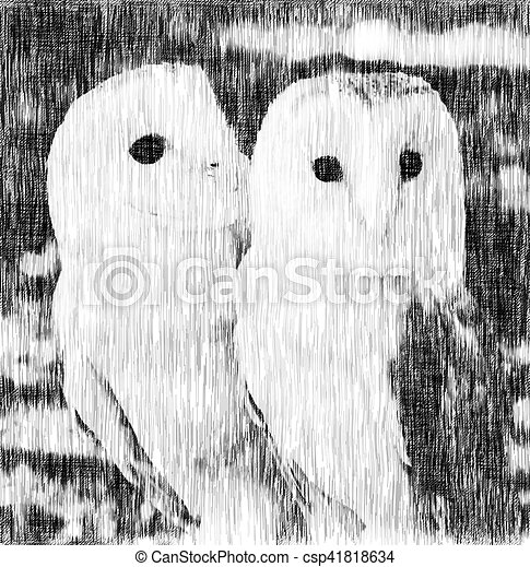 two owls friends - csp41818634