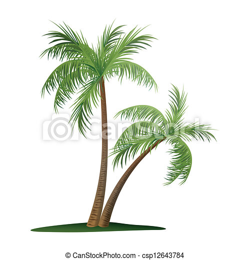 Two Palm Trees - csp12643784