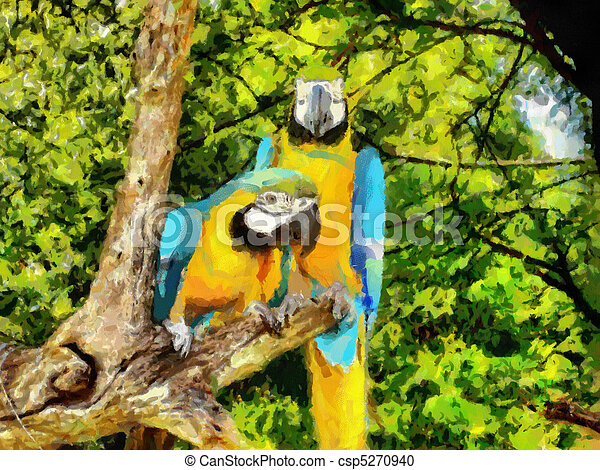 Two Parrots - csp5270940
