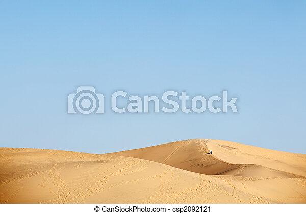 two people walking in desert dunes - csp2092121