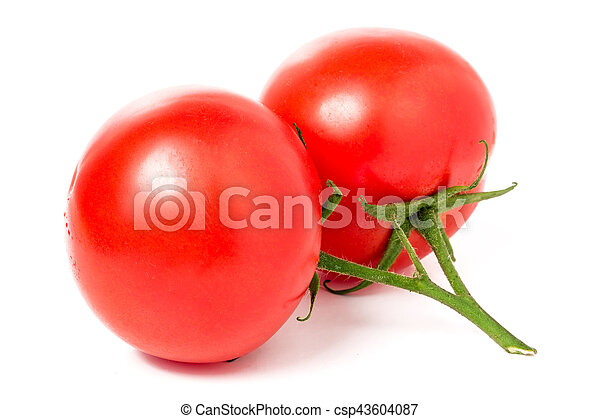 two red tomatoes on a branch isolated white background - csp43604087