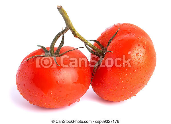 Two red tomatoes on one branch - csp69327176