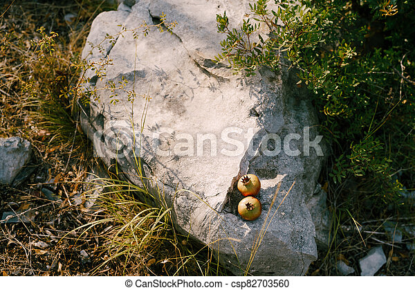 Two ripe pomegranate fruits lie on a rock. - csp82703560