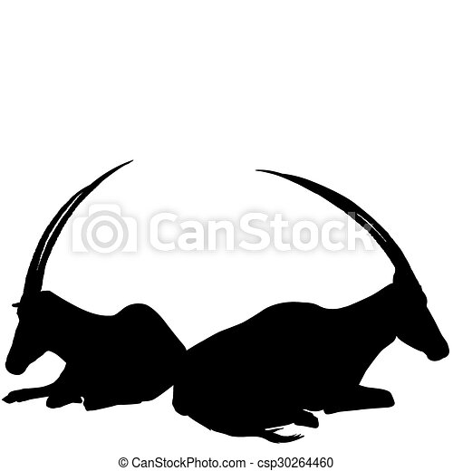 Two sitting antelopes silhouettes - csp30264460