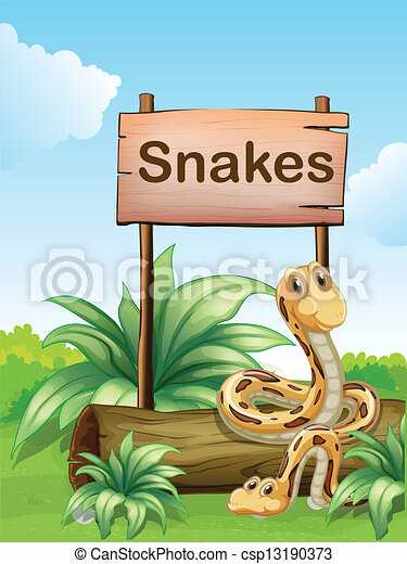 Two snakes beside a wooden signboard - csp13190373