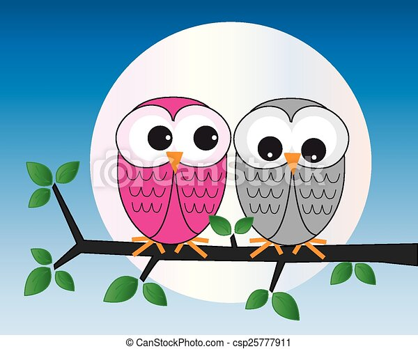 two sweet owl sitting on a branch - csp25777911