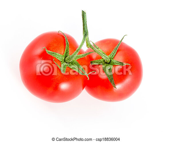 two tomatoes on a branch - csp18836004