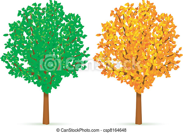 Two Trees Trees With Green And Yellow Leaves Canstock