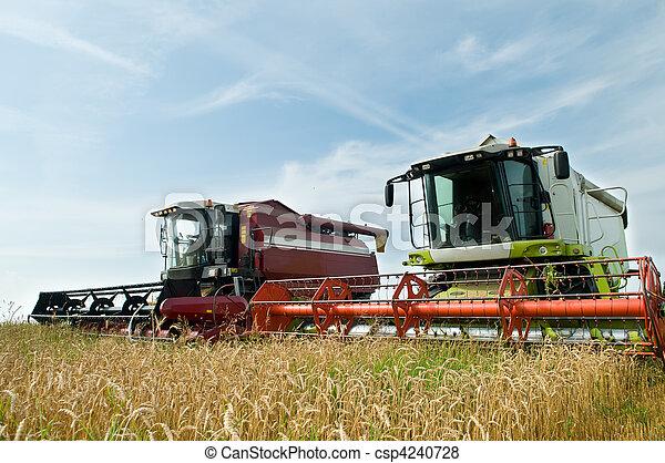 Two working harvesting combines - csp4240728