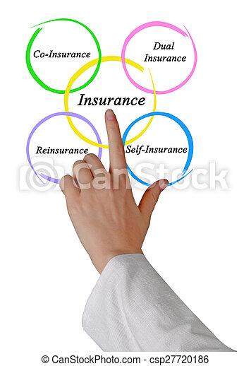 Type of Insurance - csp27720186