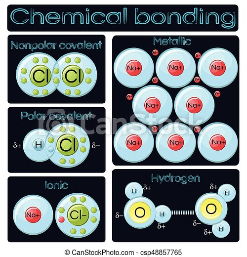 Types Of Chemical Bonding Diagram Covalent Polar And Clip Art