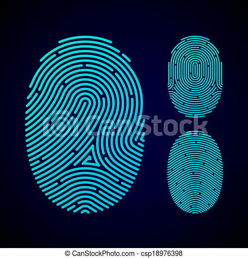 Types of fingerprint patterns - csp18976398