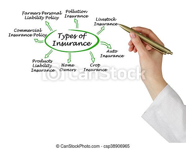 Types of Insurance - csp38906965